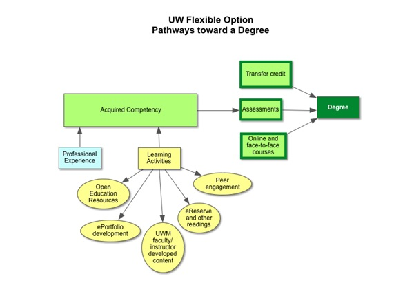 Diagram of the different pathways available to students pursuing the flexible degree option.