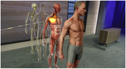 Holographic image of a male body shown, from a skeleton form to representation of muscular system.
