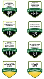 Examples of digital badges