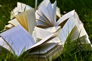 Picture of several open books surrounded by grass.