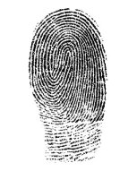 Picture of a single fingerprint in blank.