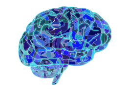 Illustration showing a stylized drawing of a brain.