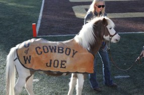 A pony ith a cover that says Cowboy Joe on a foodball field